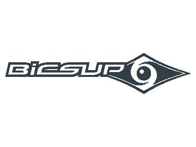 Logo BICSUP